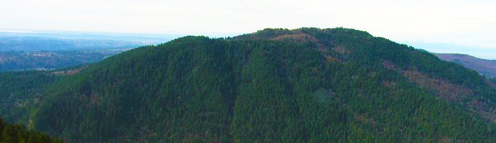 Save Squak Mountain